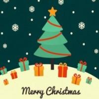 Christmas Pack #1 - Prawns + Bugs